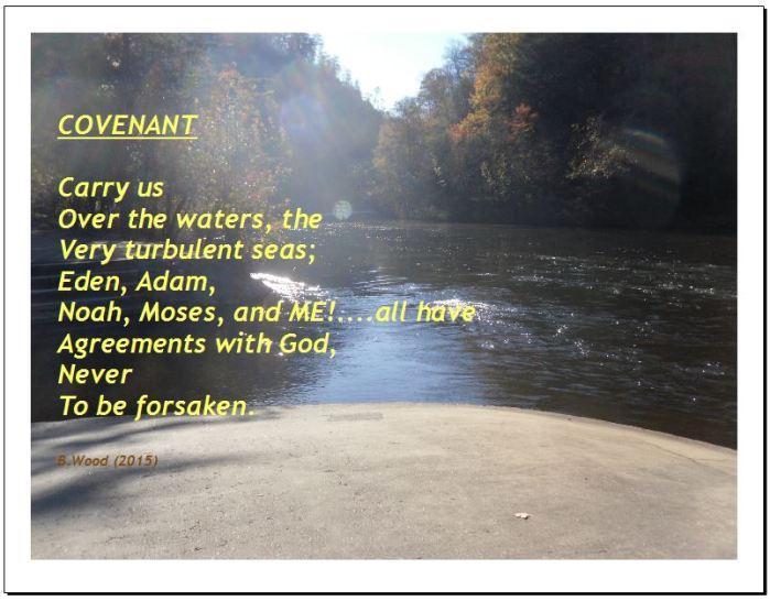 6. Covenant Meme