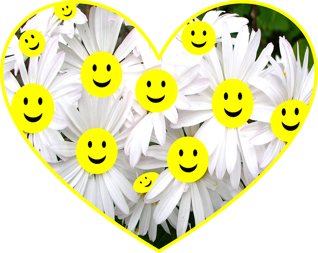 happy face daisies